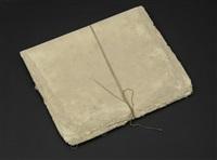 cameron's letters by michelle stuart