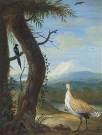 a bustard and a magpie in an exotic landscape (+ woodpecker in an exotic landscape; pair) by christoph ludwig agricola