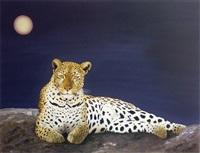 panthère au clair de lune by marc colombi