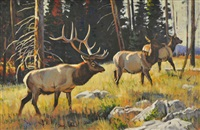 elk (bull and two cows) by dave wade