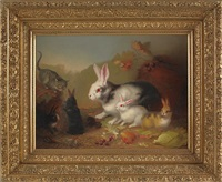 rabbits and a kitten by mary russell smith