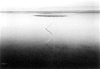 altered landscapes: the photogaphs of john pfahl by john pfahl