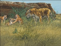 tiger with cubs by gary r. swanson