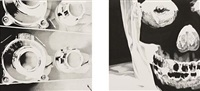 untitled (diptych) by banks violette