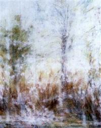febrero ii (serie lirica) by antonia soler