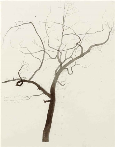 untitled scale drawing for palimpsest by roxy paine