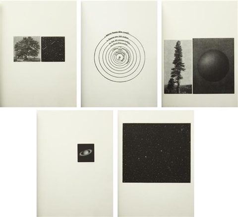 the view set of 5 by vija celmins