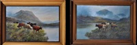 highland loch scenes with cattle by douglas cameron