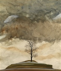 tree and clouds, fish, fields and landscape (2 works) by simon lissim