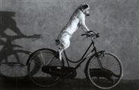 fahrrad pecorino by toni anzenberger