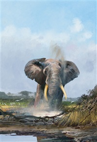 bull elephant by michael coleman