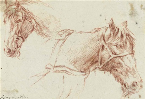 head of a horse study by adriaen van de velde