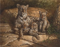 a leopard with her cubs by michael jackson