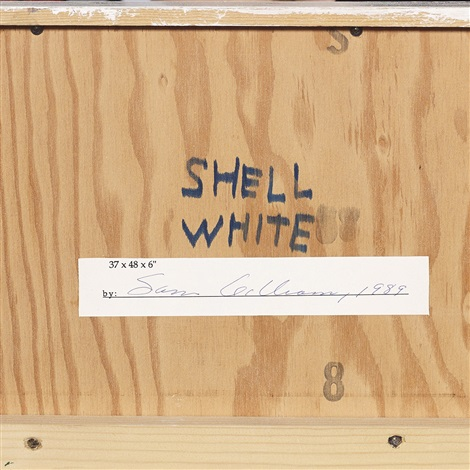 shell white by sam gilliam