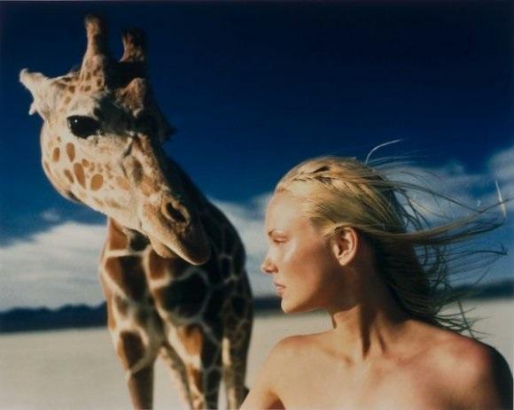 in the desert modèle à la girafe by michel comte