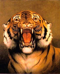 study of a roaring tiger by w. spilsbury