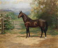 """portrait de """"trenton"""" (gagnant du grand prix de melbourne et d'autres courses en australie) by martin stainforth"""