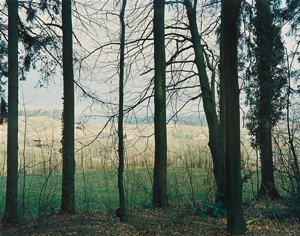 am eschberg - no. 15, winterthur by thomas struth