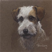 head of a wirehaired terrier by christopher gifford ambler