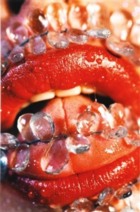 barbed by marilyn minter