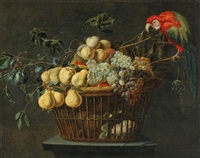Still life of a basket of fruit with a parrot