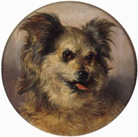 head study of a terrier by thomas william earl