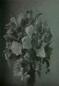 sibiriske valmuer og klokkeblomster by ove haase