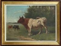taureau et vaches by charles meer webb