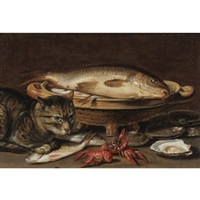 a still life with fish in a ceramic collander, oysters, langoustines, mackerel and a cat on the ledge beneath by clara peeters