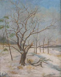 tree in winter by charles andrew hafner