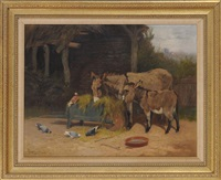 donkeys and pigeons share hay by arthur batt