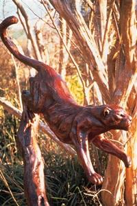 silent hunter - leopard in a tree by allen hallett