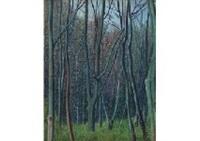 forest by rinjiro hasegawa