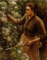 harvesting the cotton by j.h. eastwood
