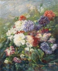 dahlias in full bloom by n. holagray