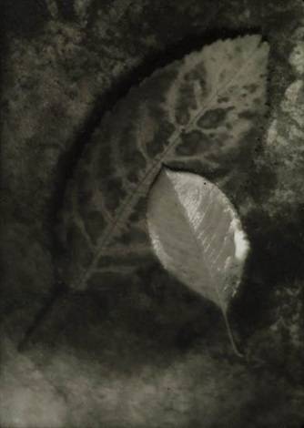 the coming of autumn by josef sudek