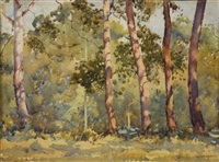 gum trees by george courtney benson