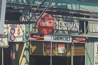fleishman by robert cottingham