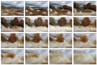 a bird / blast no.130 (set of 17 works) by naoya hatakeyama