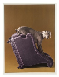 side view by william wegman