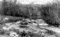 paysage à la rivière by adolphe francois appia