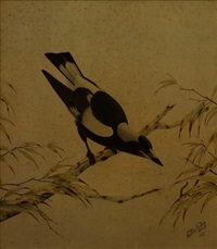 magpie by neville william cayley