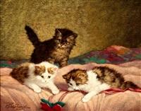 drie kittens met een bloemenlint by cornelis raaphorst