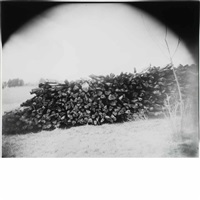 untitled georgia # 17, stacked wood by sally mann