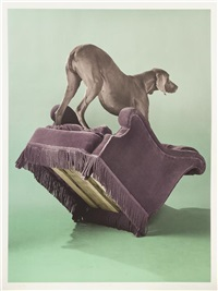 overview by william wegman