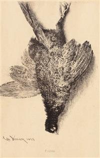 fazan by theodor aman