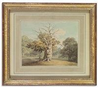 an oak at kiddlestone, derbyshire by john white abbott
