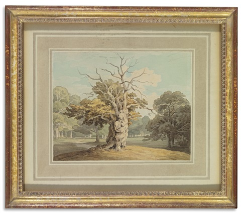 an oak at kiddlestone derbyshire by john white abbott