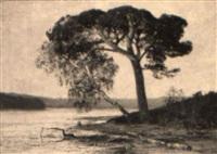 seenlandschaft mit einzelner kiefer und birke am ufer by julius wentscher