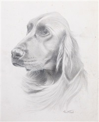dog drawing 1 by rex flood